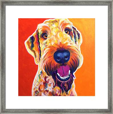 Airedoodle - Hank Framed Print by Alicia VanNoy Call