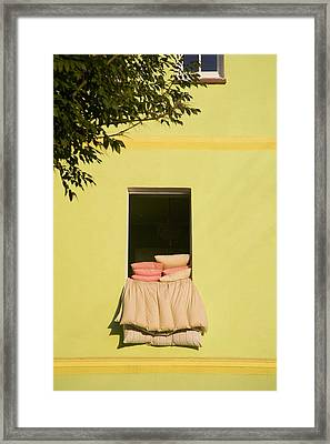 Airing Out Framed Print by Diane Macdonald