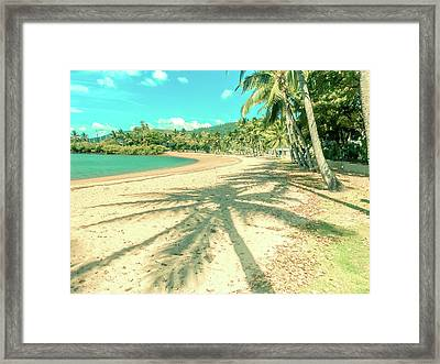 Airlie Palms Framed Print
