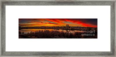Airport Pond Sunrise Framed Print by Robert Bales