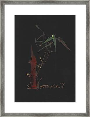 Ak72 Framed Print by Arlita Kadar