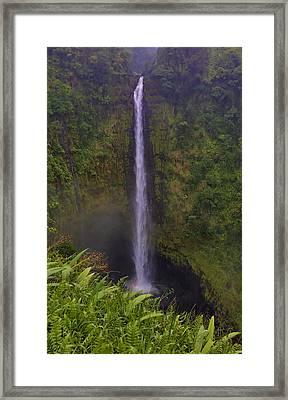 Akaka Falls Framed Print