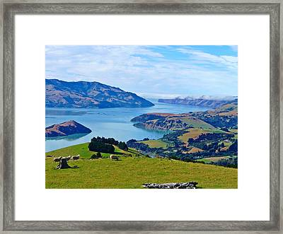 Akaroa View Framed Print