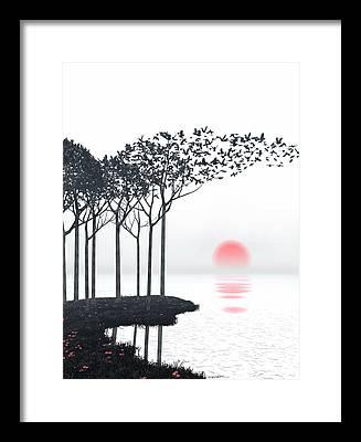 Black Bird Framed Prints