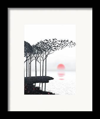 Birds Framed Prints