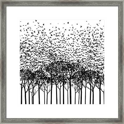 Aki Monochrome Framed Print by Cynthia Decker