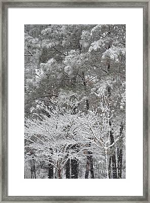 Alabama Snow 2017 Framed Print