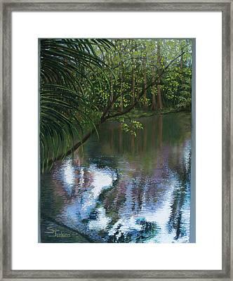 Alafia River Reflection Framed Print