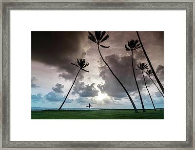 Alaia Palms Framed Print by Sean Davey