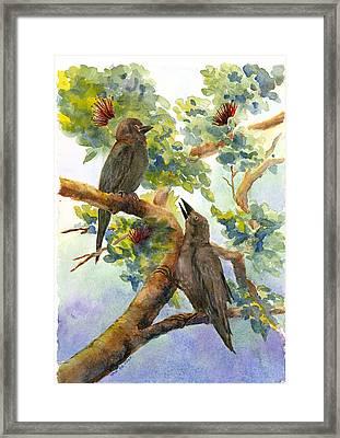 'alala Framed Print by Wicki Van De Veer