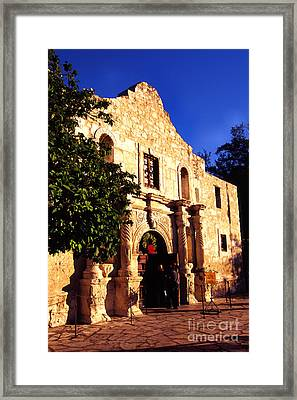 Alamo Evening Light Framed Print by Thomas R Fletcher
