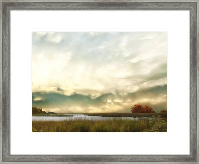 Alan Fresh Creek Framed Print