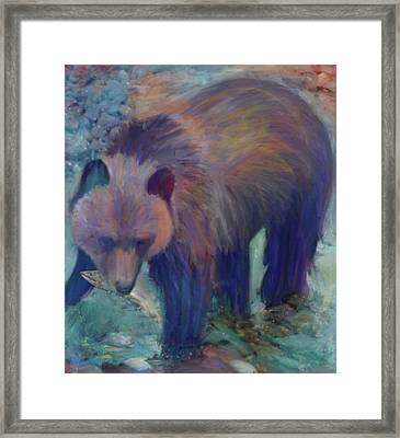 Alaska Bear  Framed Print