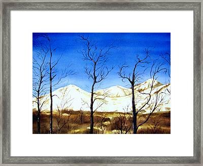 Alaska Blue Sky Day  Framed Print by Brenda Owen