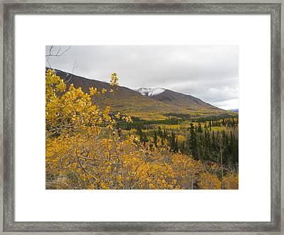 Alaska Frontier Framed Print by Kimber  Butler