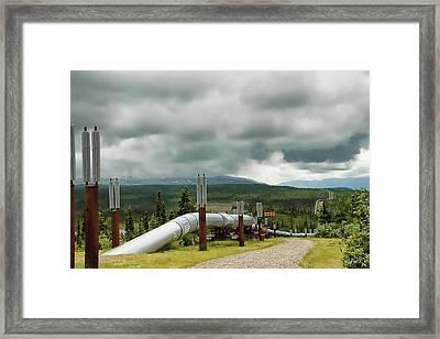 Alaska Pipeline Framed Print by Dyle   Warren