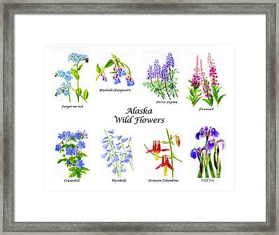 Alaska Wild Flowers Poster Horizontal Framed Print by Sharon Freeman