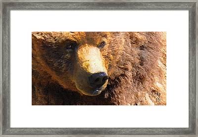 Alaskan Kodiak Bear Framed Print by Diane E Berry