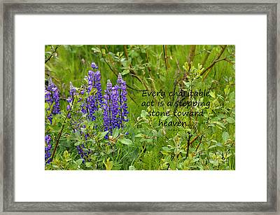 Framed Print featuring the photograph Alaskan Lupine Heaven by Diane E Berry