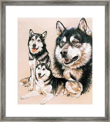 Alaskan Malamute Framed Print by Barbara Keith