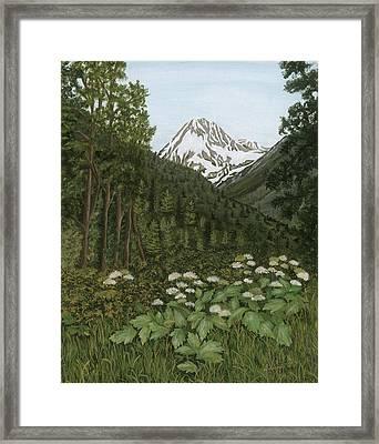 Alaskan Mountains Framed Print