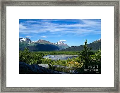 Alaska's Exit Glacier Valley Framed Print