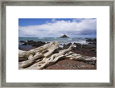 Alau Islet, Driftwood Framed Print by Ron Dahlquist - Printscapes