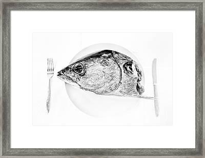 Albacore Tuna Head Framed Print by Masako Metz