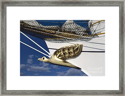 Framed Print featuring the photograph Albatross Figurehead by Heiko Koehrer-Wagner