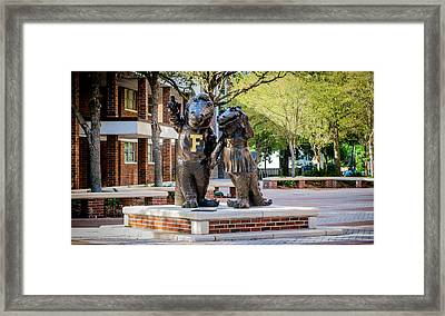 Albert And Alberta Gator Framed Print