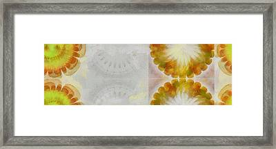 Albigenses Configuration Flower  Id 16165-013340-05300 Framed Print by S Lurk