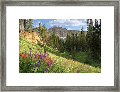 Albion Basin Wasatch Mountains Utah Framed Print