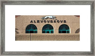 Albuquerque Hound Framed Print