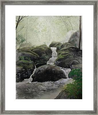 Alder Creek  Framed Print