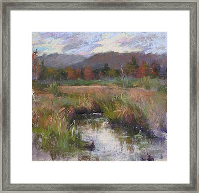 Alder Meadow September Framed Print by Susan Williamson
