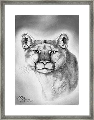 Alert Cougar Framed Print by Bob Patterson