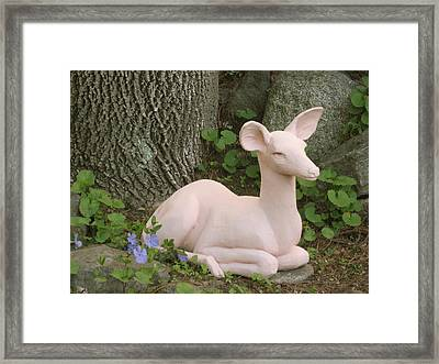 Alert Fawn In The Forest Framed Print