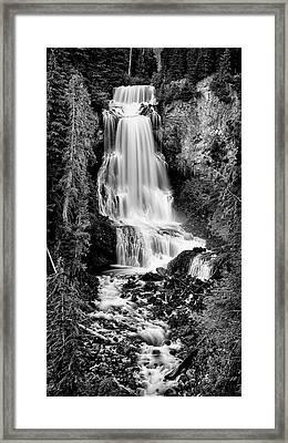 Alexander Falls - Bw 2 Framed Print