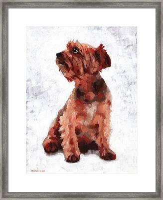 Alfie Framed Print