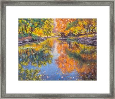 Alfred Caldwell Lily Pool 1 Framed Print