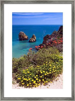 Algarve Coast In Spring Framed Print by John McKinlay
