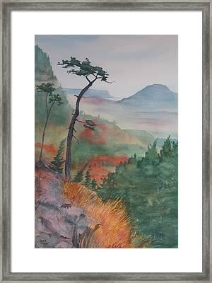 Algoma Morning  Framed Print by Debbie Homewood