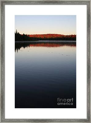 Algonquin First Light Framed Print by Chris Hill