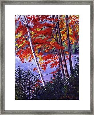 Algonquin Lake Fall Framed Print