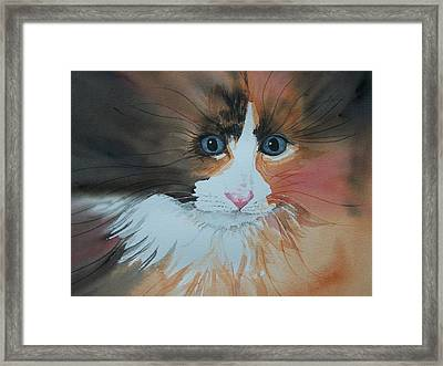 Ali Cat Abstract Framed Print
