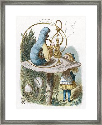 Alice And The Caterpillar In Wonderland Framed Print