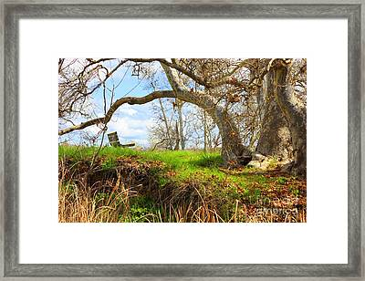 Alice's Wonderland Framed Print by Carol Groenen