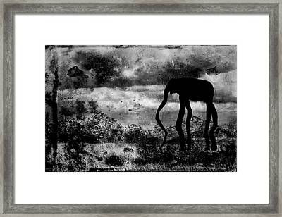 Dream-5 Framed Print