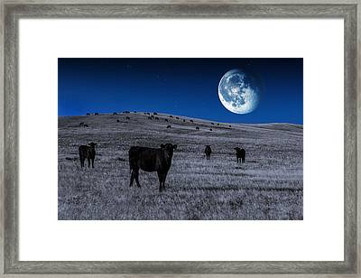 Alien Cows Framed Print by Todd Klassy