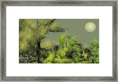 Alien Garden 2 Framed Print by David Lane